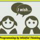 Programming by wishful thinking